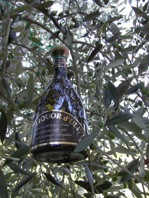 Einen besonderen Geschmack hat der unten abgebildeter Olivenlikör aus den Marchen.