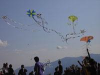 Drachenfest in Urbino, am ersten Sonntag im September!